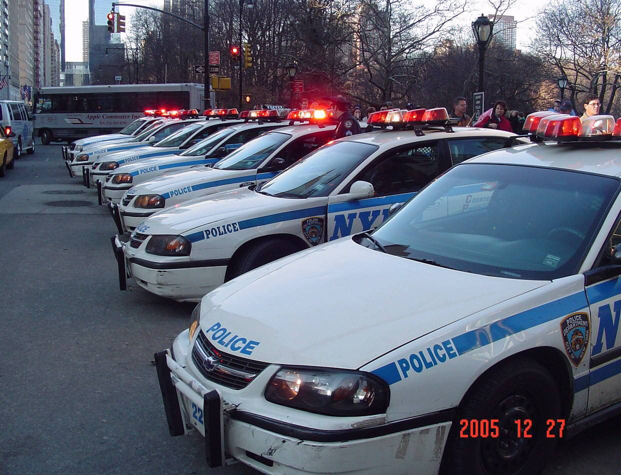 A row of NYPD police cars.